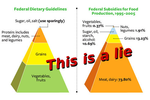 Food Pyramid And Subsidies